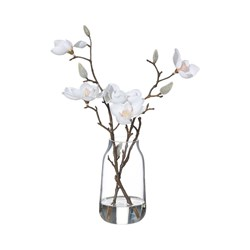MAGNOLIA WHT IN GLASS VASE (6)