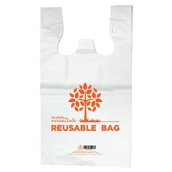 CARRY BAG LGE REUSABLE PRINTED 540X300+160MM  500/CTN
