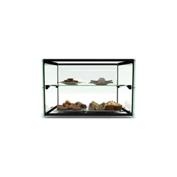 DISPLAY CABINET AMBIENT  2 LEVEL 550X390X375MM