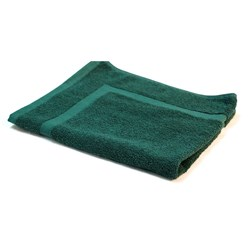 ESSENTIAL BATH MAT CVD GRN 500X700MM 650GSM (20)